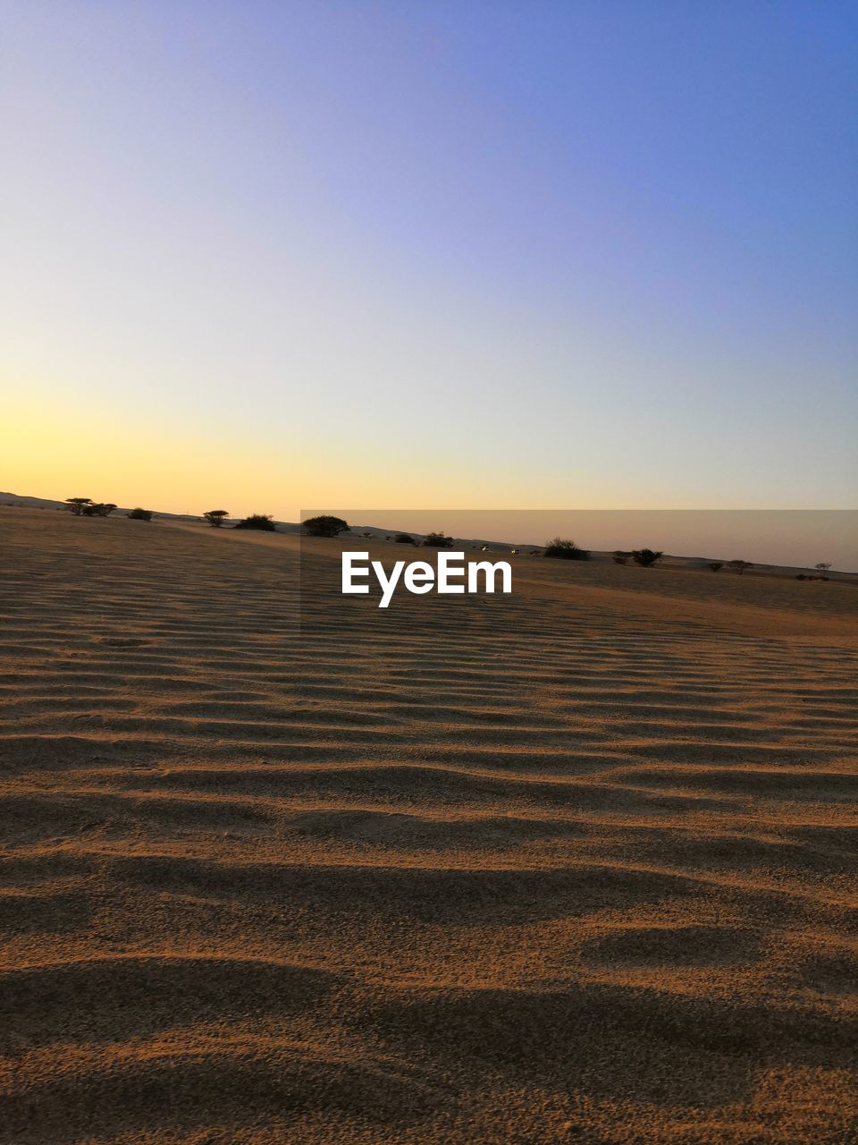 sky, landscape, tranquility, tranquil scene, scenics - nature, environment, land, clear sky, copy space, field, beauty in nature, no people, sunset, nature, non-urban scene, horizon, agriculture, outdoors, sand, rural scene, arid climate