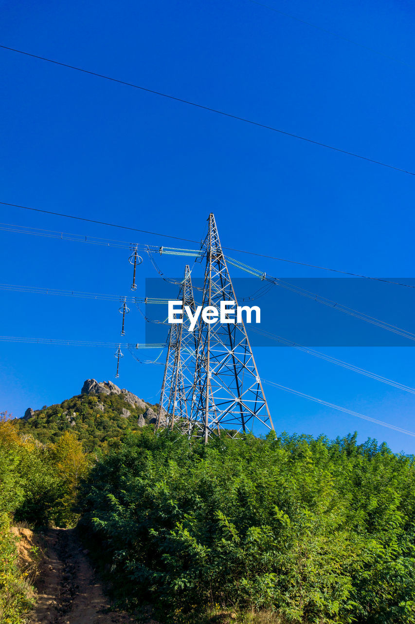 plant, blue, sky, cable, tree, electricity, connection, electricity pylon, power line, no people, nature, fuel and power generation, land, power supply, low angle view, clear sky, technology, day, tall - high, growth, outdoors, turquoise colored