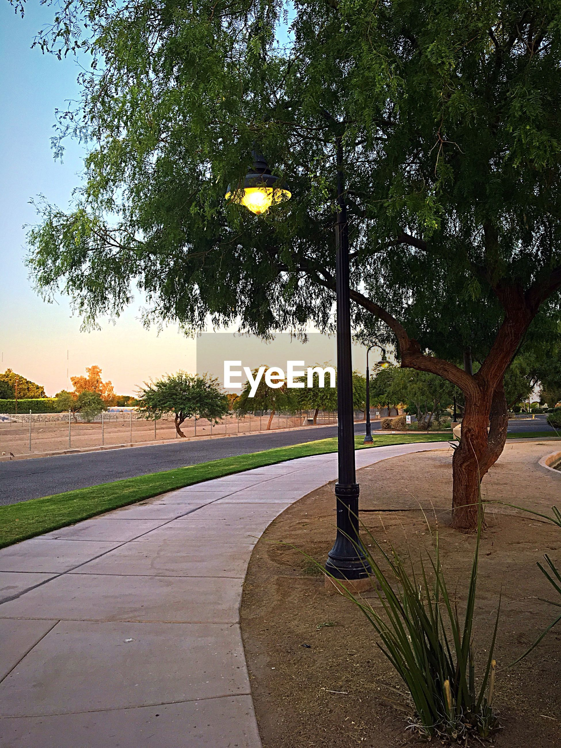 Loving these Park Lamps at West Wetlands. Taking my morning Walk and enjoying the scene💫 Just me. Morning Excercise Walk iPhone Photography Just Me. Morning Excercise Walk IPhone Photography Fun With IPhone Peace Of Mind Sunrise Enjoying The Morning Tranquil Scene Tree Plant Nature No People Outdoors Park Beauty In Nature Park - Man Made Space