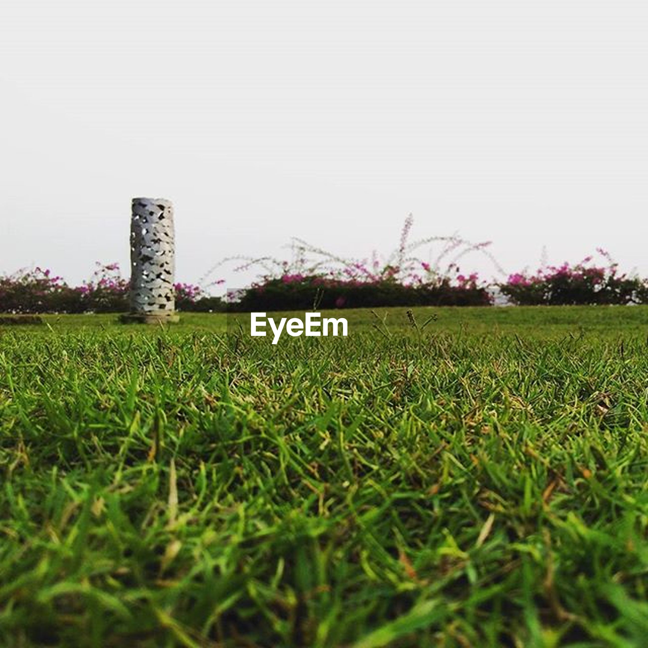 grass, field, clear sky, built structure, architecture, green color, copy space, building exterior, grassy, growth, landscape, rural scene, nature, day, old, outdoors, no people, agriculture, tranquility, lawn