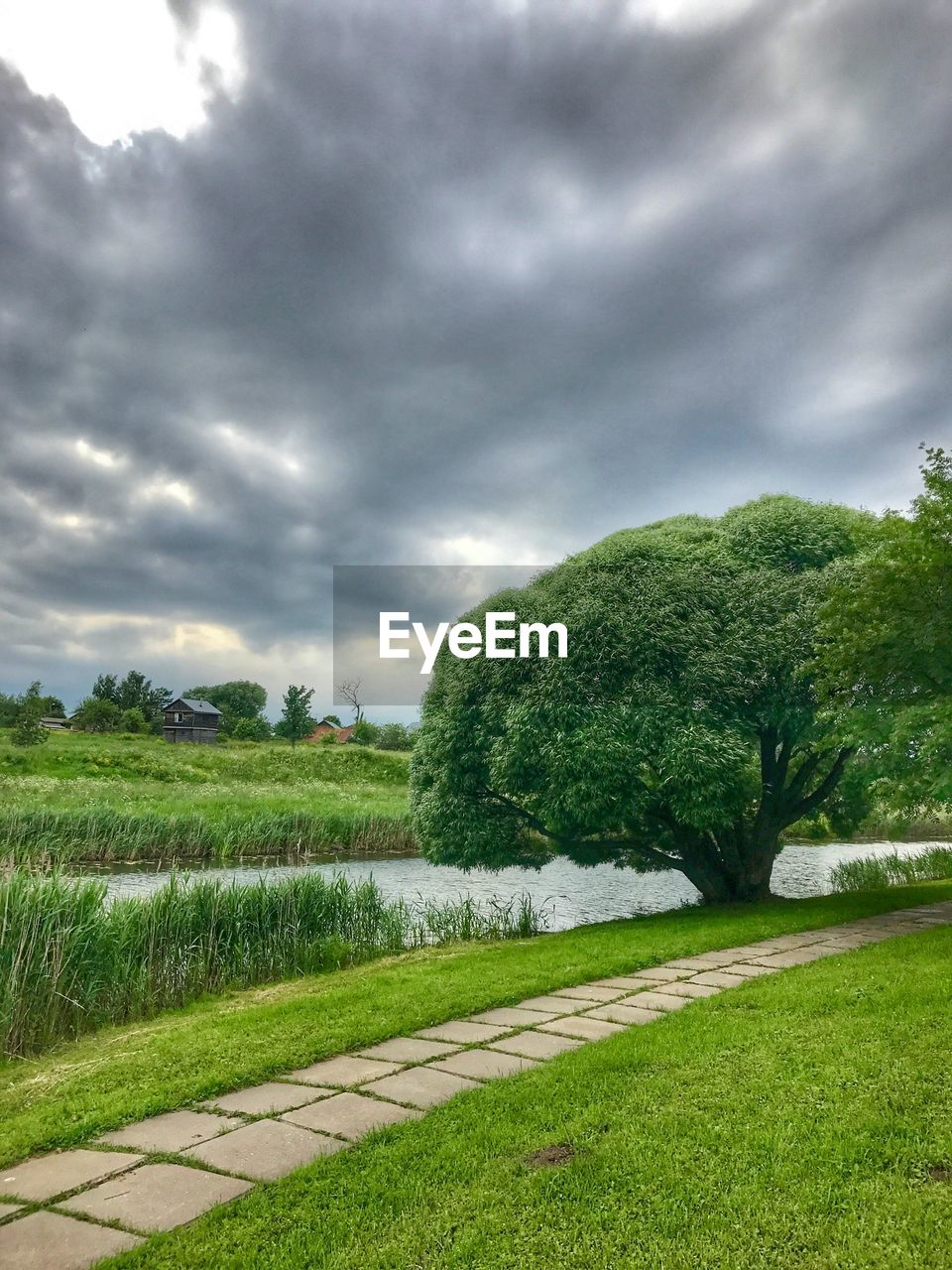 grass, cloud - sky, green color, tree, nature, sky, scenics, field, tranquility, beauty in nature, landscape, growth, no people, tranquil scene, outdoors, day, water, rural scene, storm cloud