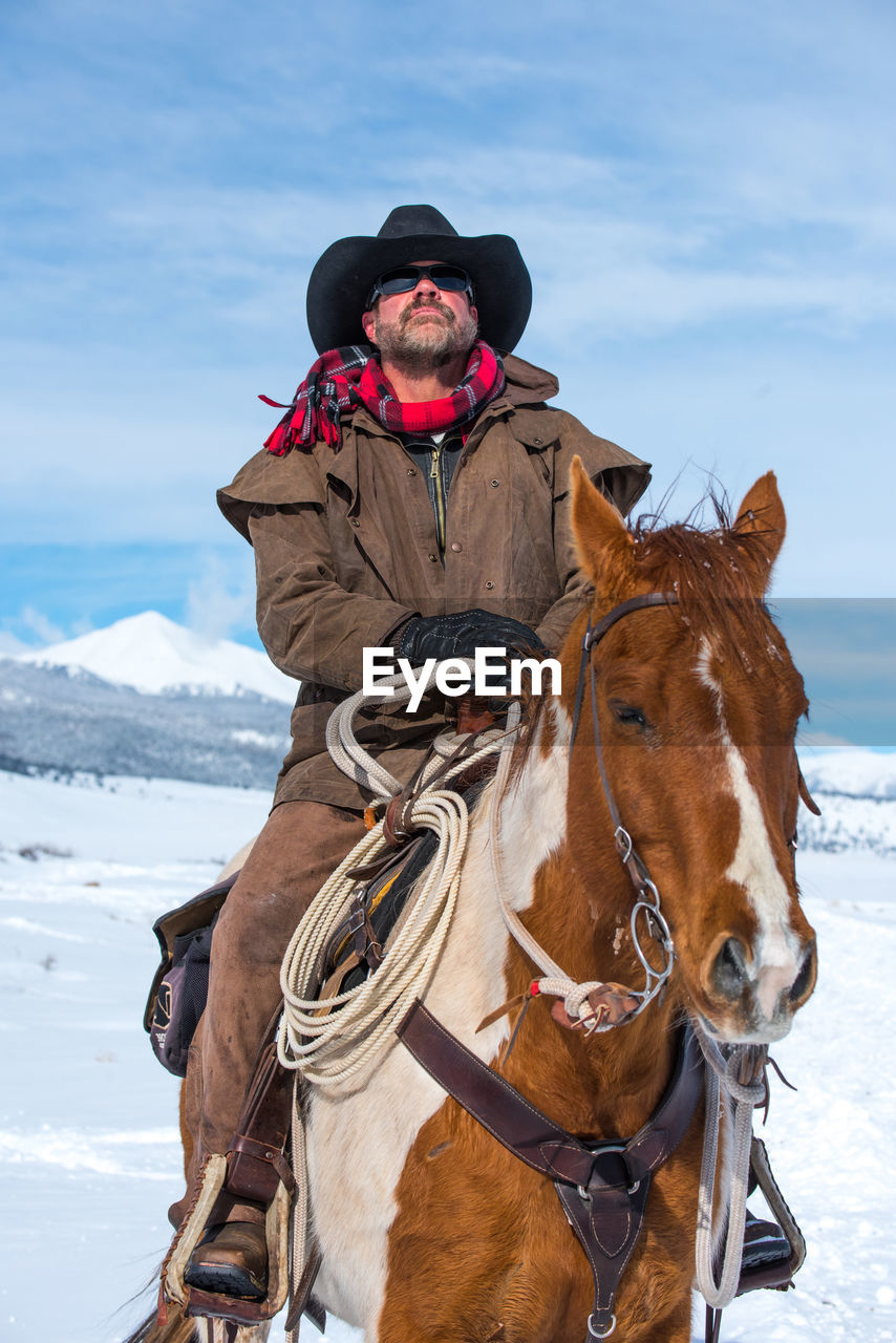 domestic, domestic animals, mammal, pets, livestock, horse, animal themes, animal, animal wildlife, vertebrate, working animal, one animal, winter, cold temperature, day, sky, snow, one person, nature, riding, herbivorous, outdoors, warm clothing