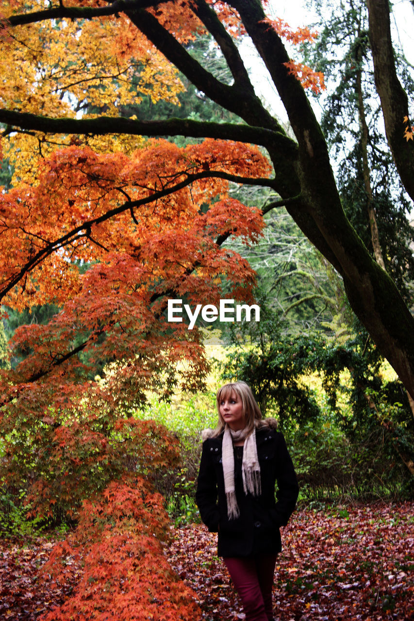 autumn, tree, leaf, nature, change, one person, front view, park - man made space, jacket, standing, outdoors, real people, day, young women, fashion, branch, leisure activity, young adult, tree trunk, lifestyles, forest, growth, beauty in nature, adult, people