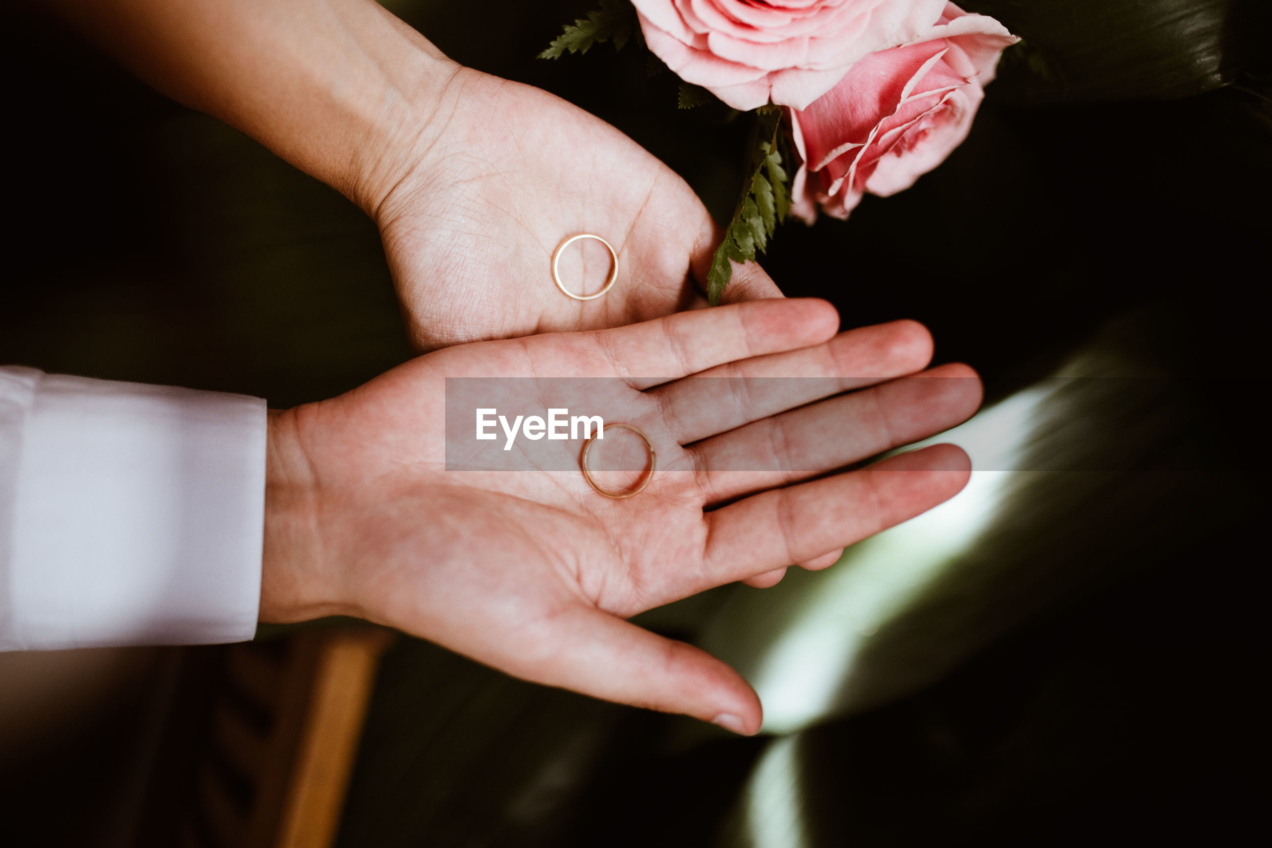 Cropped hands of couple holding wedding rings