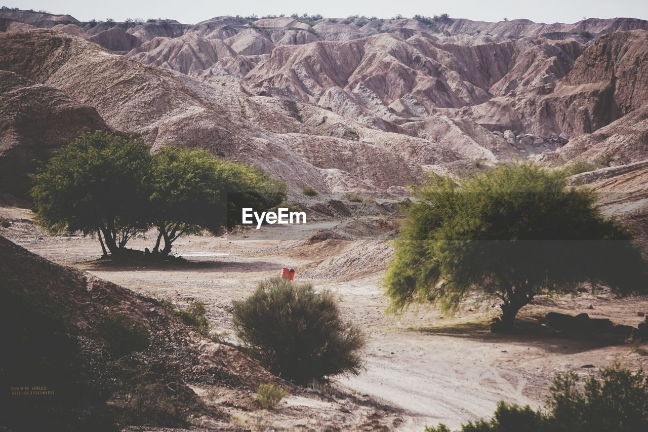 mountain, plant, tree, scenics - nature, beauty in nature, landscape, day, nature, environment, tranquil scene, non-urban scene, tranquility, outdoors, mountain range, road, transportation, land, rock, real people, rock formation, formation, arid climate, climate