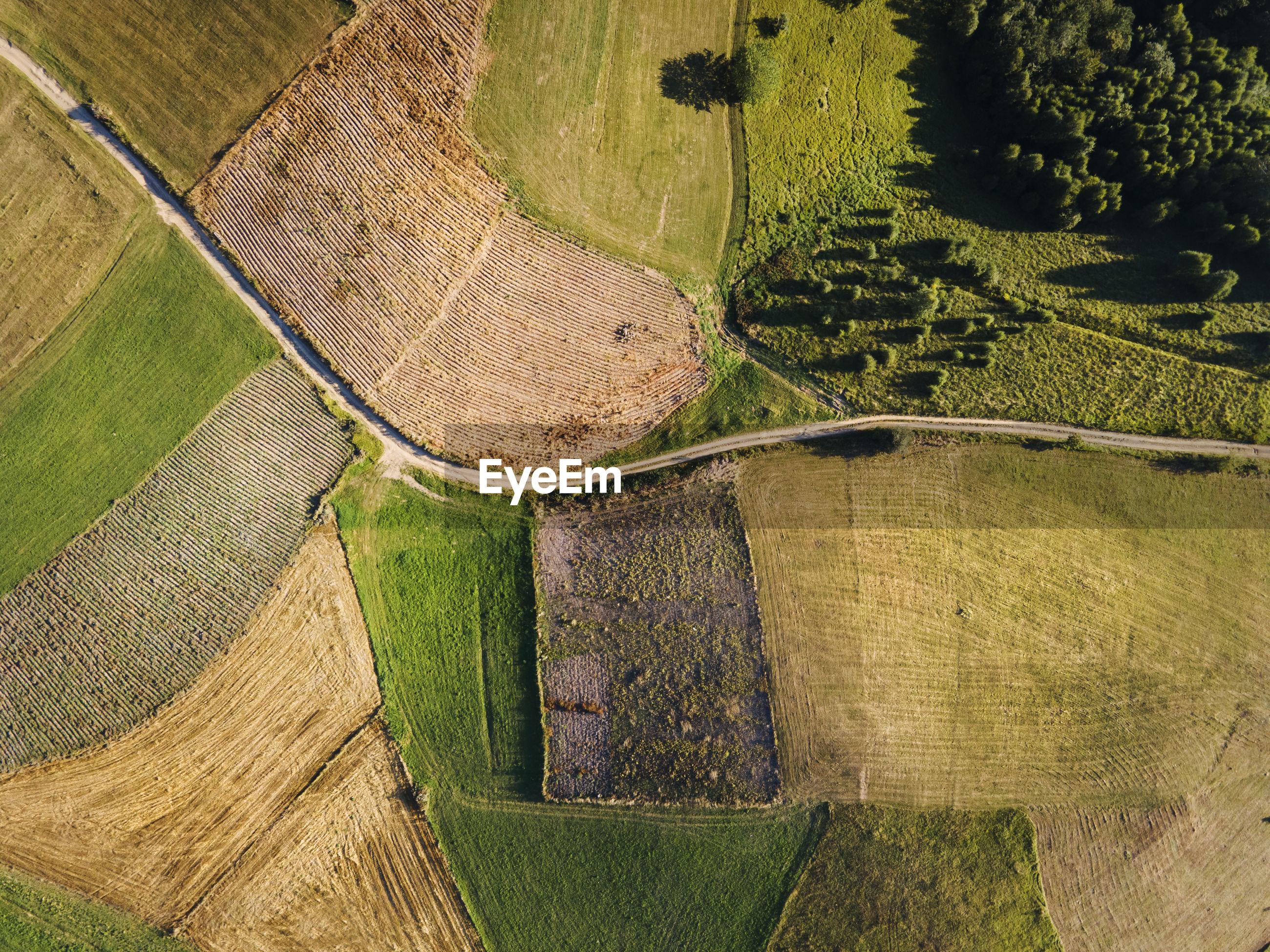 HIGH ANGLE VIEW OF FARM