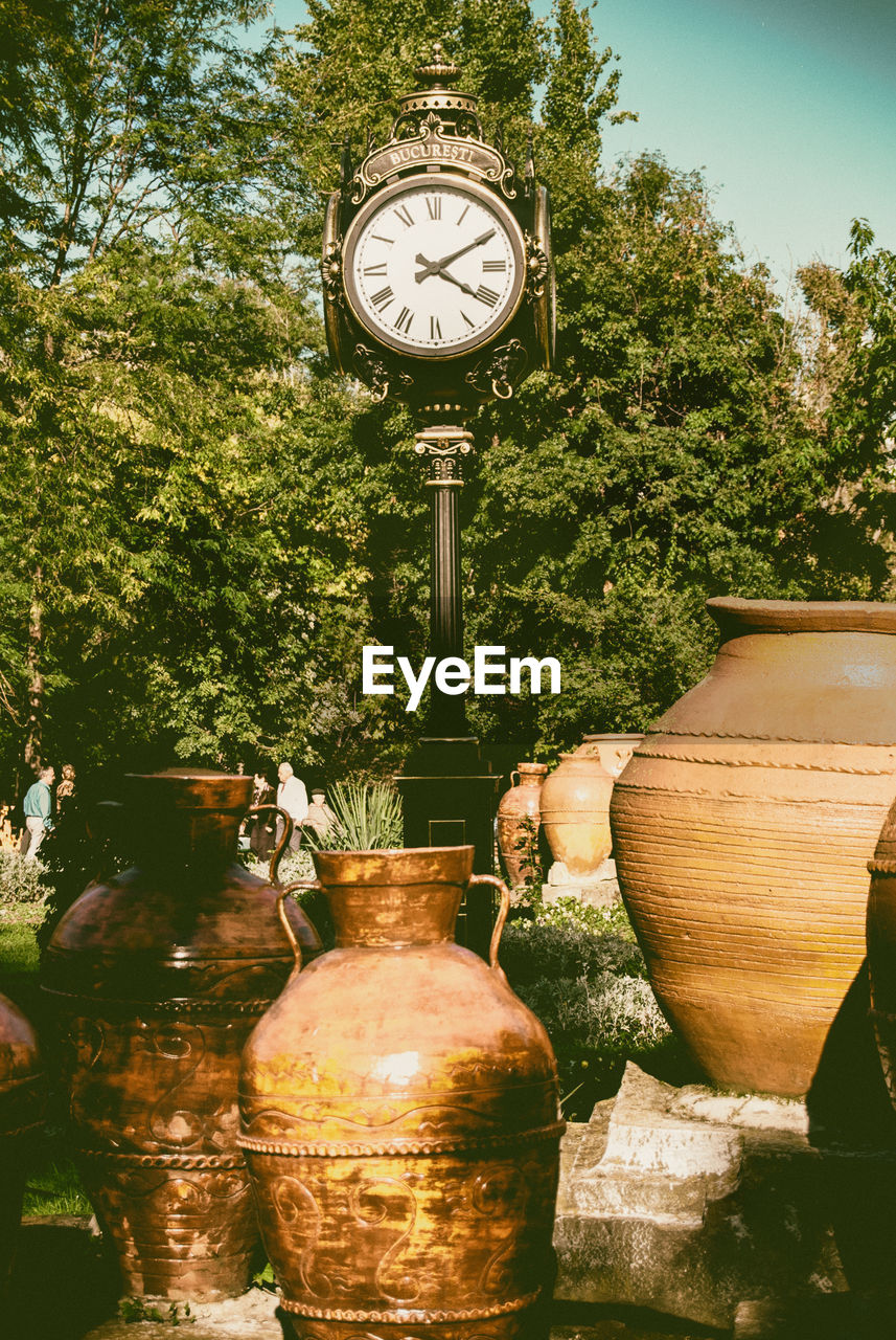 tree, plant, clock, time, day, no people, nature, outdoors, garden, accuracy, art and craft, potted plant, instrument of time, sunlight, formal garden, growth, built structure, wood - material, architecture, container, clock face