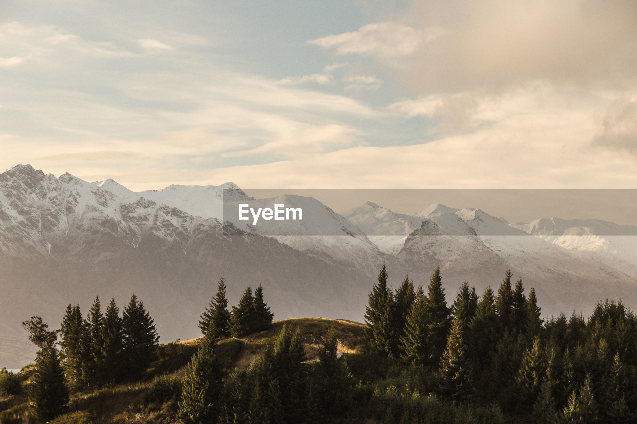 Trees against snowcapped mountains during sunset