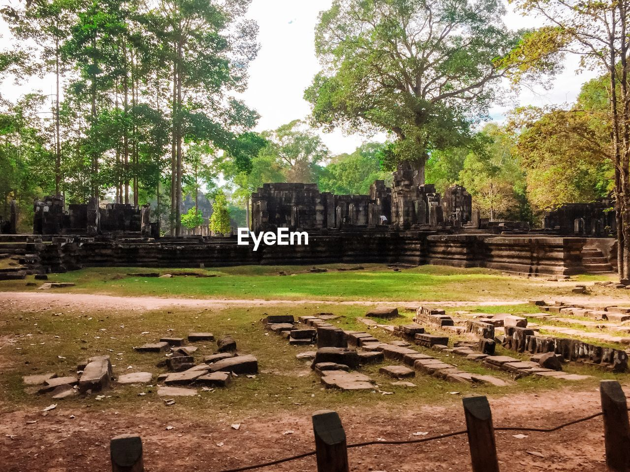 old ruin, ancient civilization, history, spirituality, place of worship, architecture, religion, built structure, building exterior, the past, ancient, travel destinations, day, travel, no people, tree, outdoors