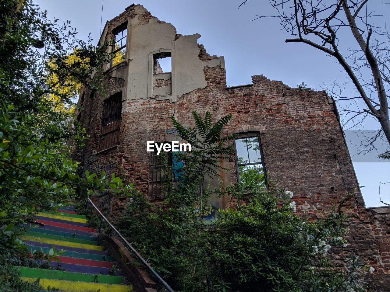 architecture, built structure, tree, plant, building, building exterior, sky, low angle view, nature, no people, day, growth, clear sky, window, old, residential district, abandoned, house, outdoors, staircase, brick