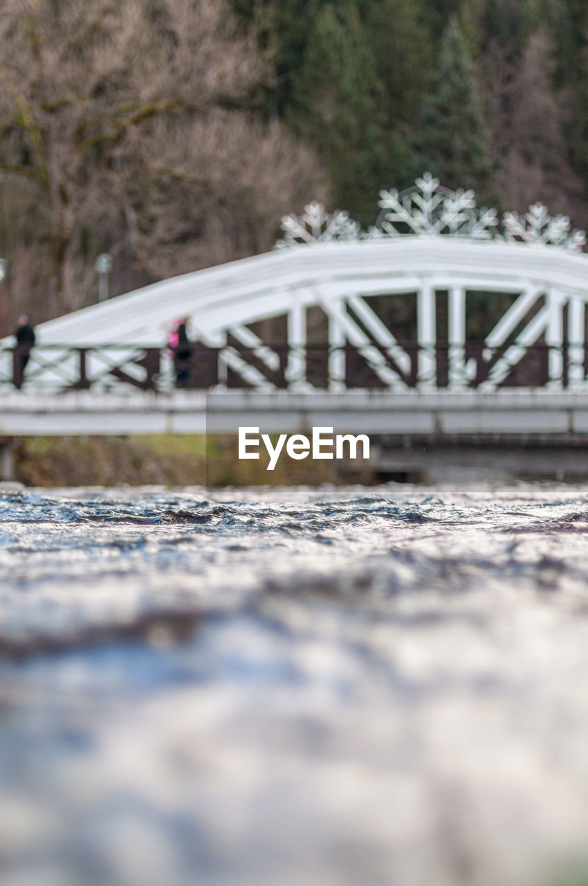 bridge - man made structure, connection, selective focus, surface level, day, outdoors, tree, transportation, footbridge, nature, architecture, no people, cold temperature, close-up, sky