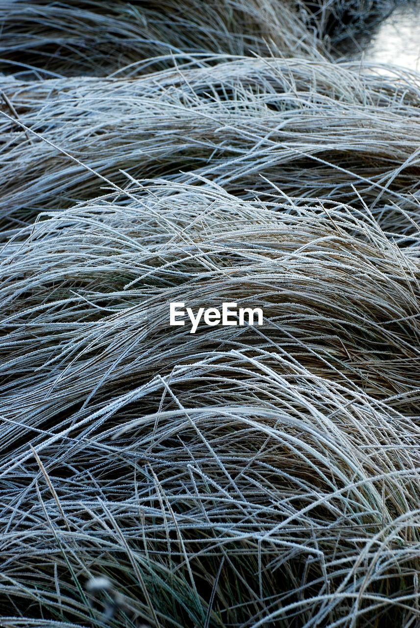 backgrounds, full frame, no people, high angle view, complexity, stack, fishing net, day, outdoors, close-up, nature, hay bale