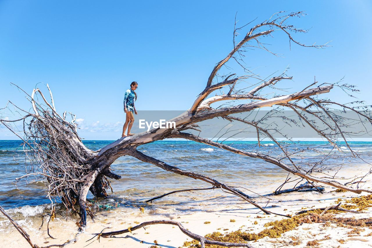 one person, water, sky, real people, full length, beauty in nature, leisure activity, tree, lifestyles, day, sea, scenics - nature, nature, clear sky, side view, land, tranquility, beach, outdoors, driftwood