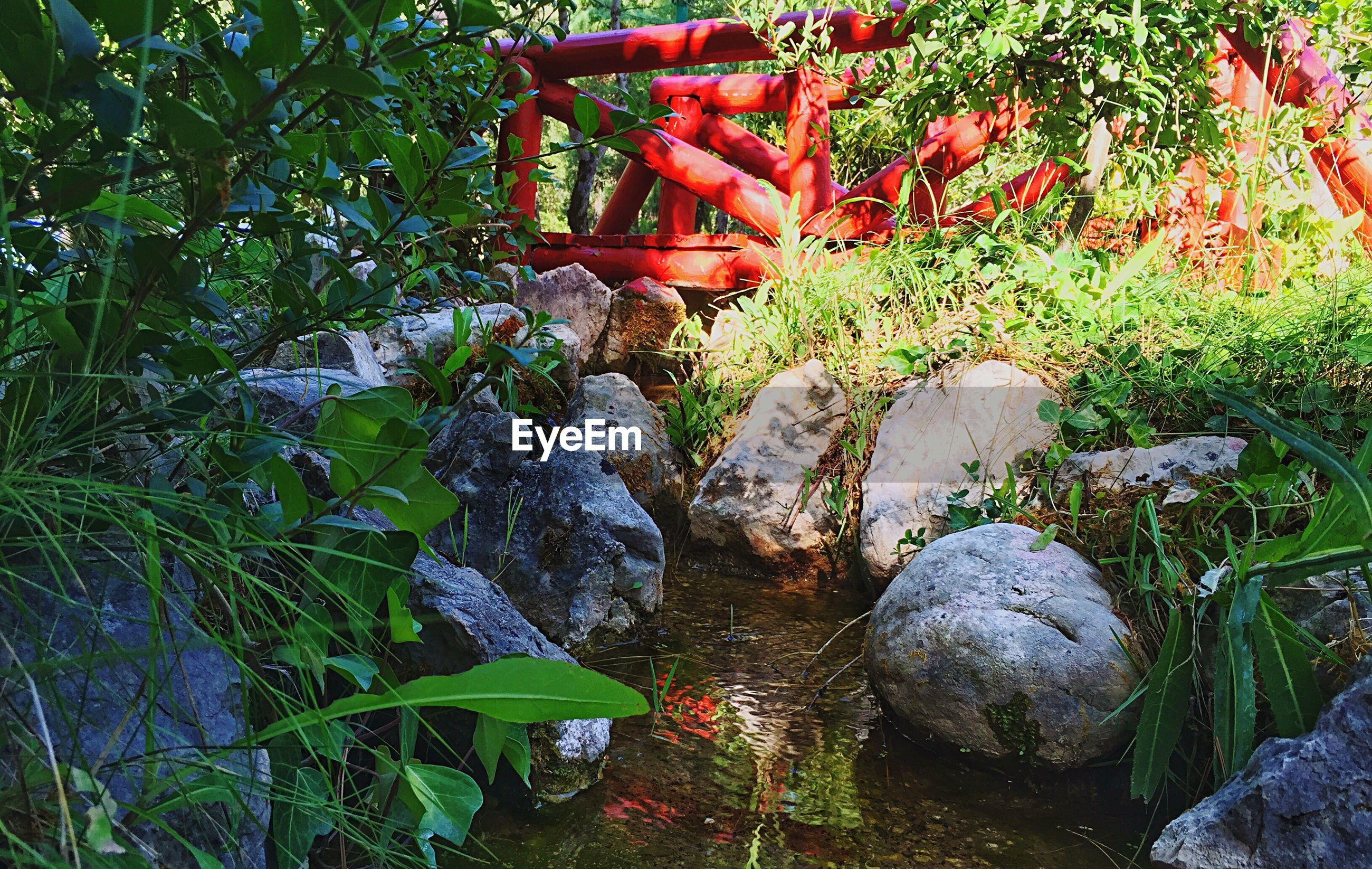 Red bridge over stream in garden
