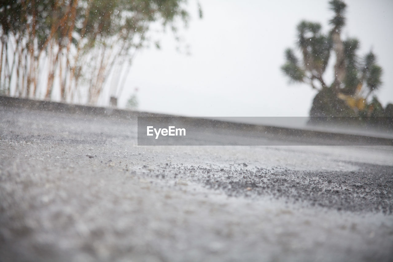 surface level, selective focus, day, road, outdoors, no people, nature, tree, sky, water, clear sky, close-up, beauty in nature