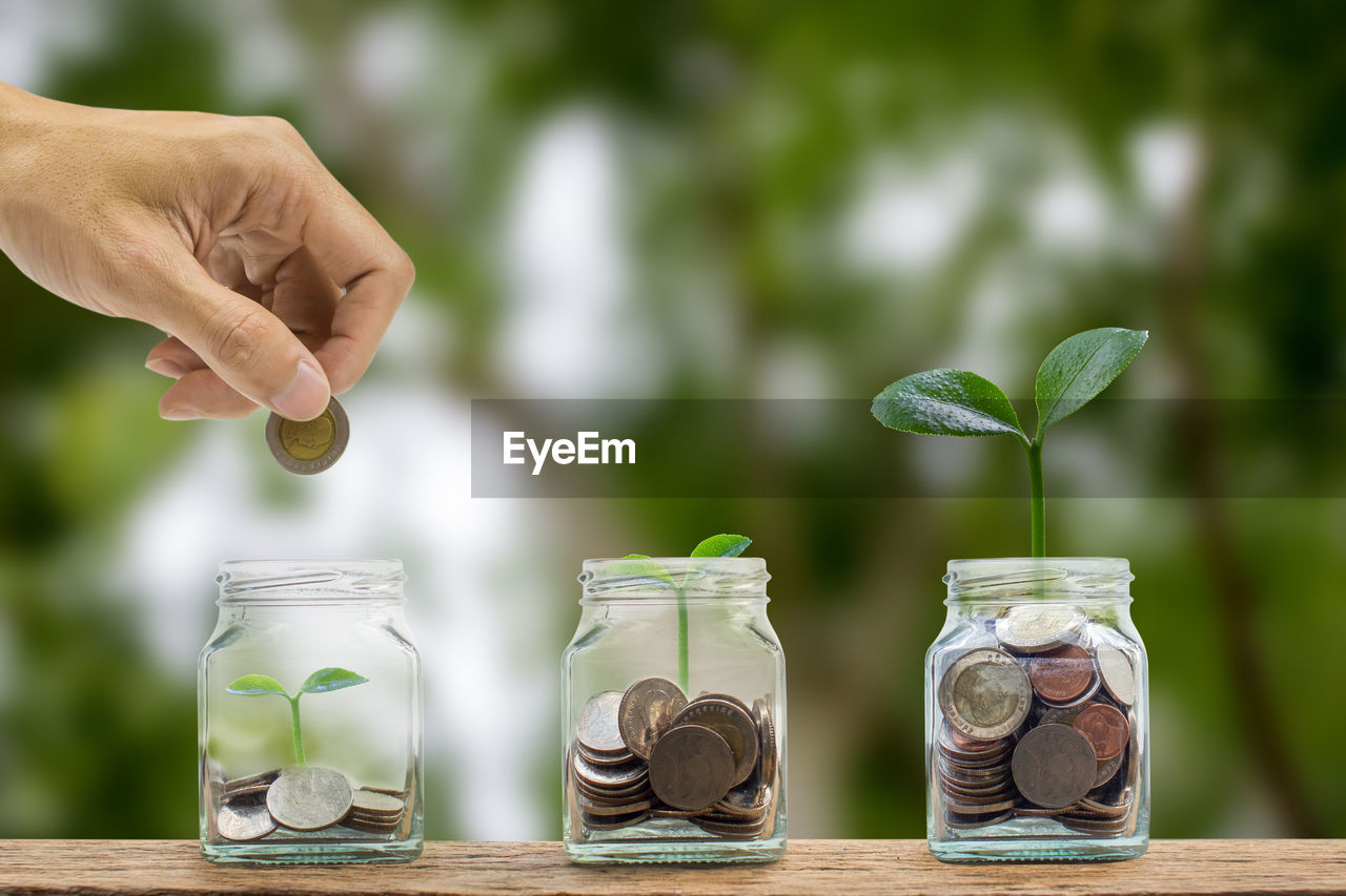 Cropped hand inserting coin in jar with plant