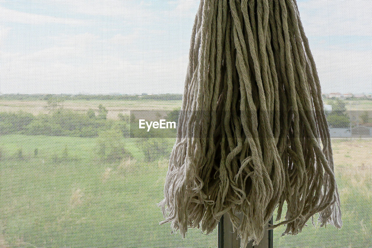 day, hair, hairstyle, window, nature, one person, plant, rear view, sky, long hair, tree, outdoors, landscape, women, environment, field, lifestyles, standing, adult, human hair, obscured face