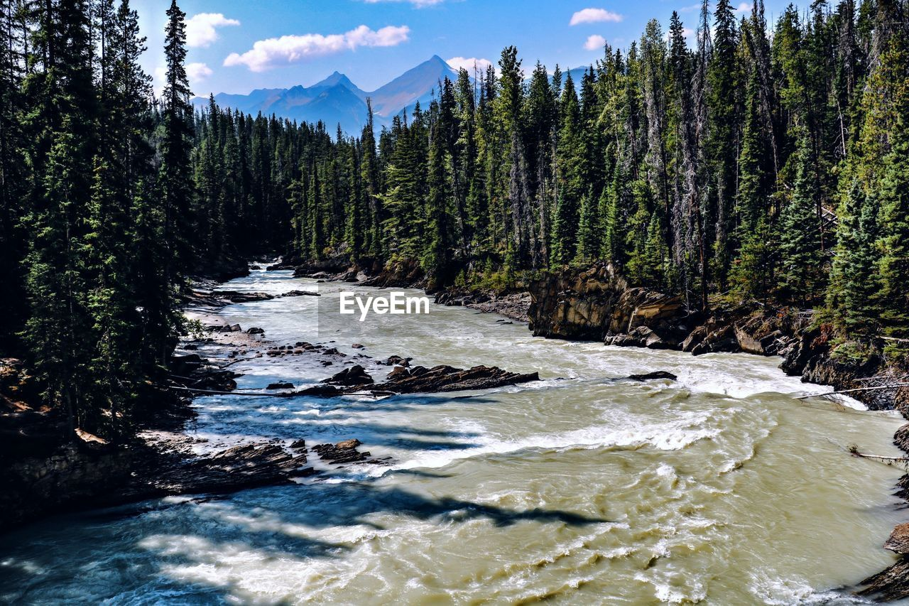 beauty in nature, tree, water, plant, scenics - nature, mountain, nature, no people, non-urban scene, day, cloud - sky, motion, sky, tranquil scene, tranquility, land, outdoors, rock, river, flowing water, flowing, power in nature