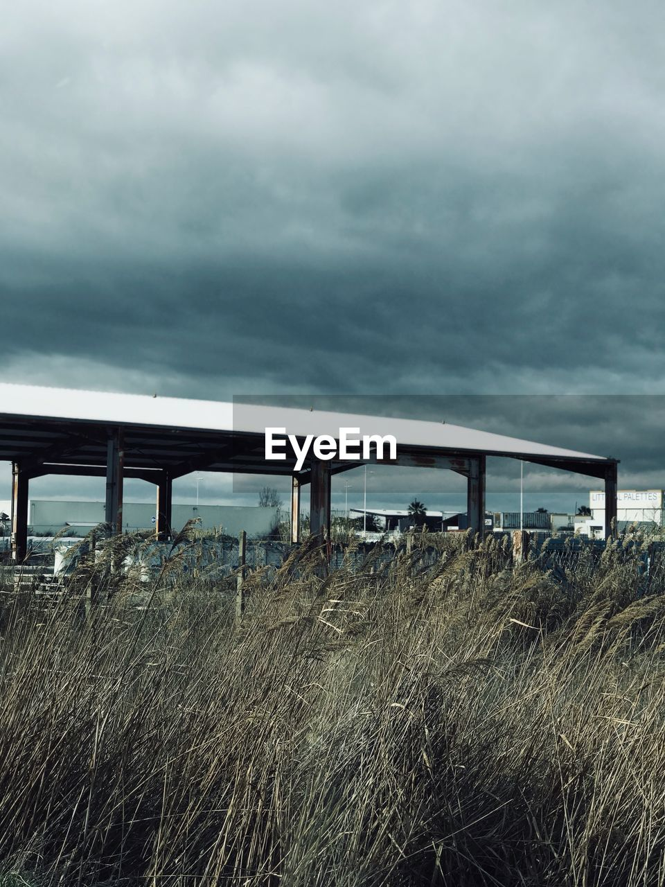 no people, abandoned, day, sky, cloud - sky, built structure, grass, outdoors, architecture, fuel pump, nature