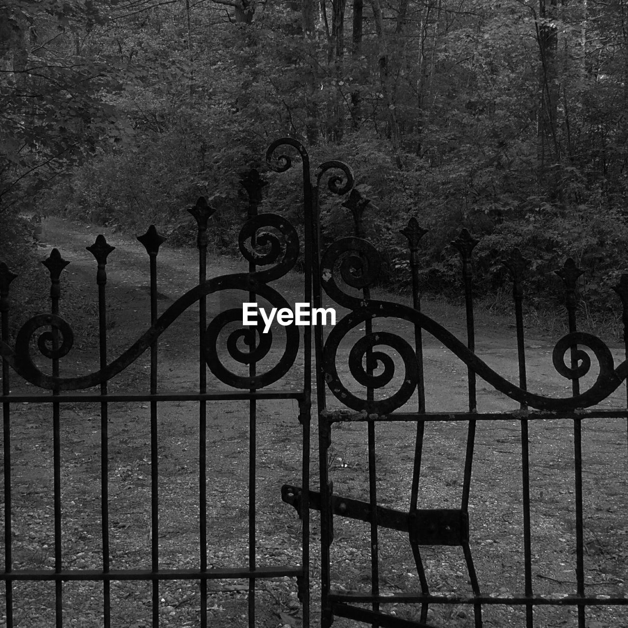 wrought iron, fence, barrier, protection, metal, safety, security, boundary, no people, day, gate, outdoors, iron - metal, architecture, closed, built structure, transportation, nature, pattern, railing, iron