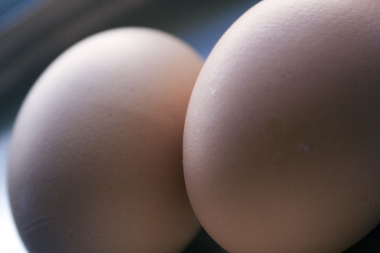 close-up, egg, human skin, indoors, focus on foreground, one person, food, freshness, day