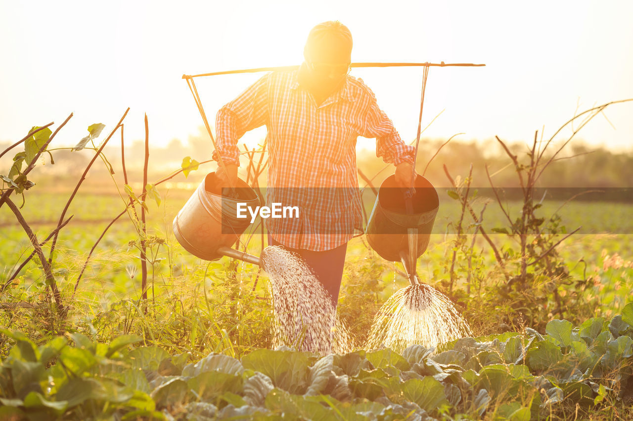 plant, field, real people, one person, land, nature, holding, sunlight, day, sky, growth, casual clothing, lifestyles, rear view, beauty in nature, working, landscape, adult, outdoors, lens flare, farmer