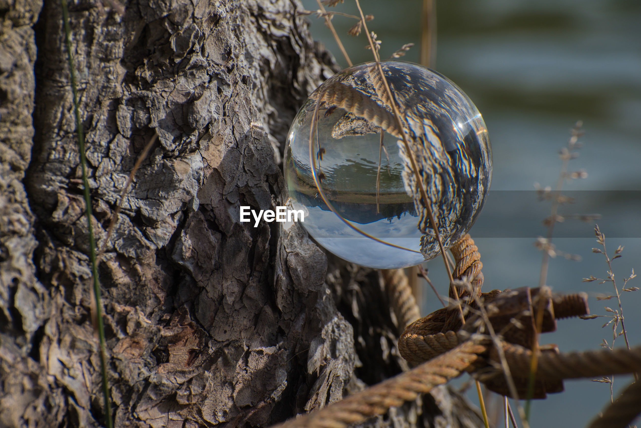 Reflection of landscape in crystal ball