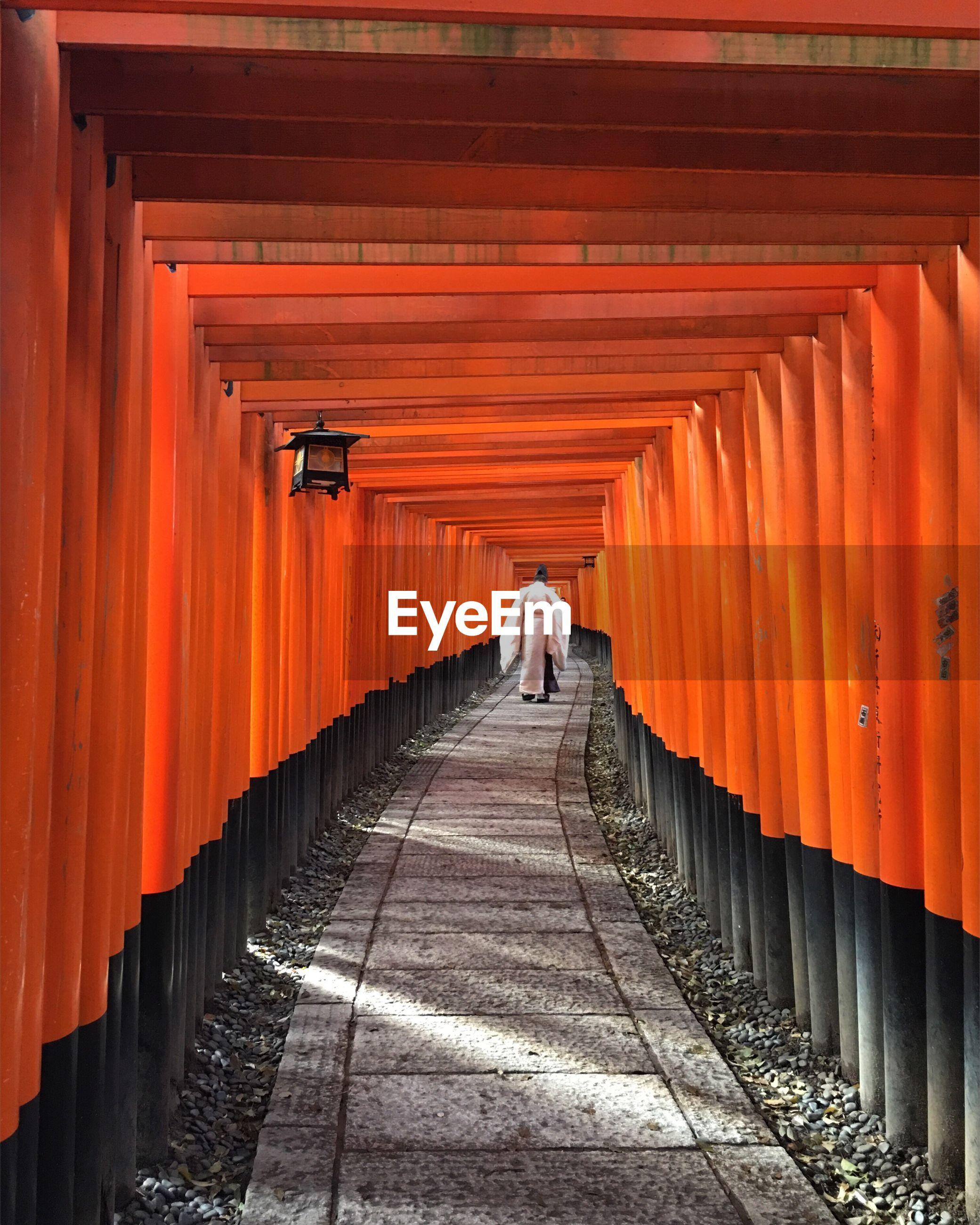 Rear view of man walking at inari shrine