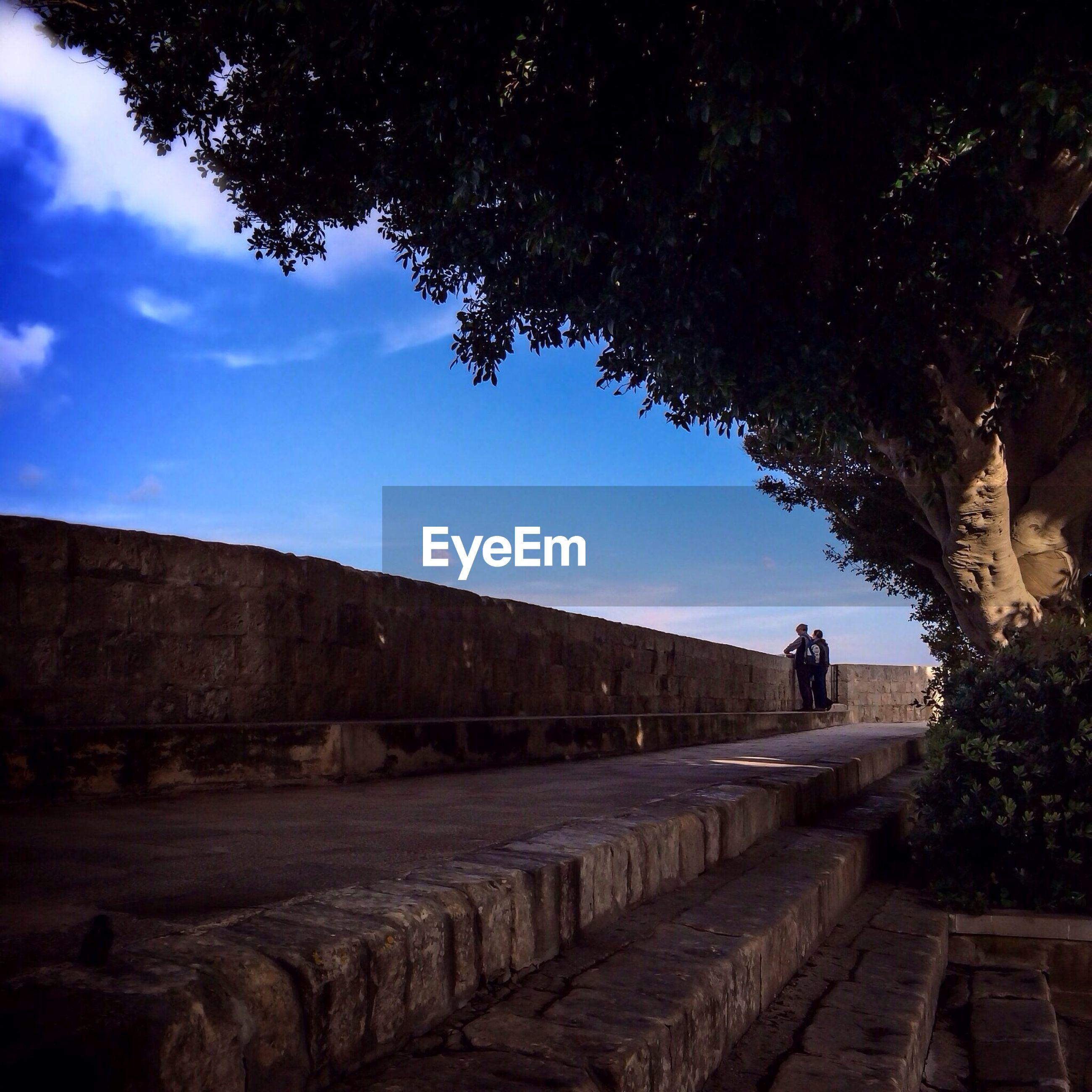 People standing under tree