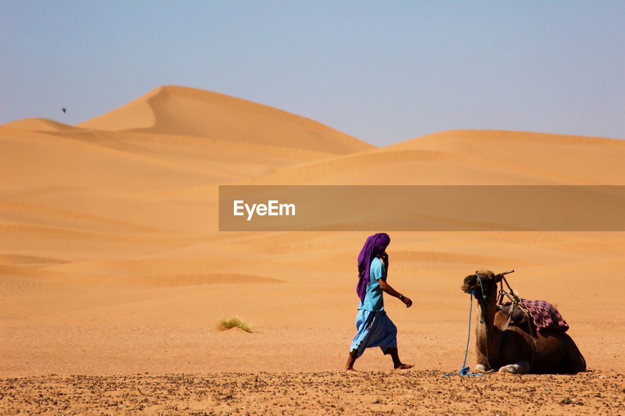 Man With Camel On Sand Dune In Desert Against Clear Sky