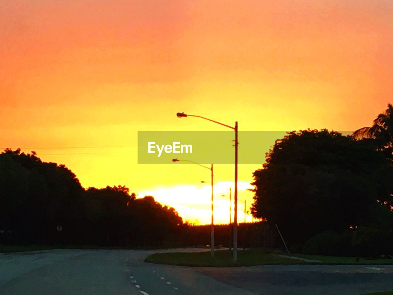 sunset, silhouette, orange color, tree, sky, nature, outdoors, road, no people, scenics, street light, beauty in nature, water, clear sky, day