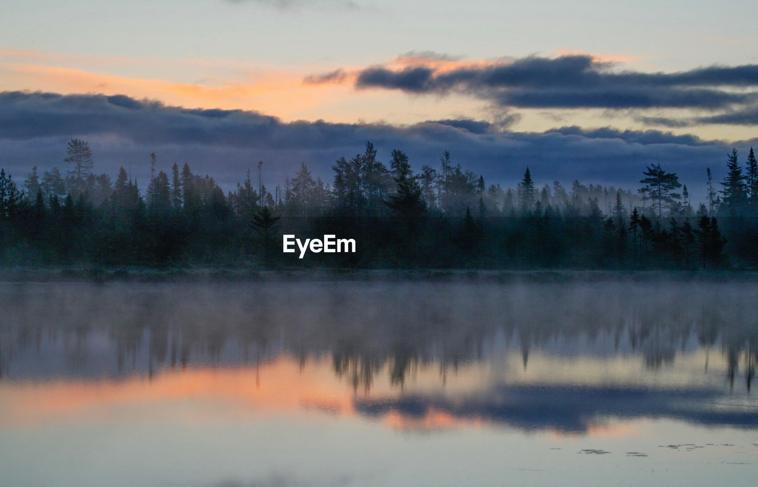 nature, tree, reflection, sky, no people, tranquility, beauty in nature, scenics, sunset, tranquil scene, forest, water, lake, cloud - sky, outdoors, landscape, day