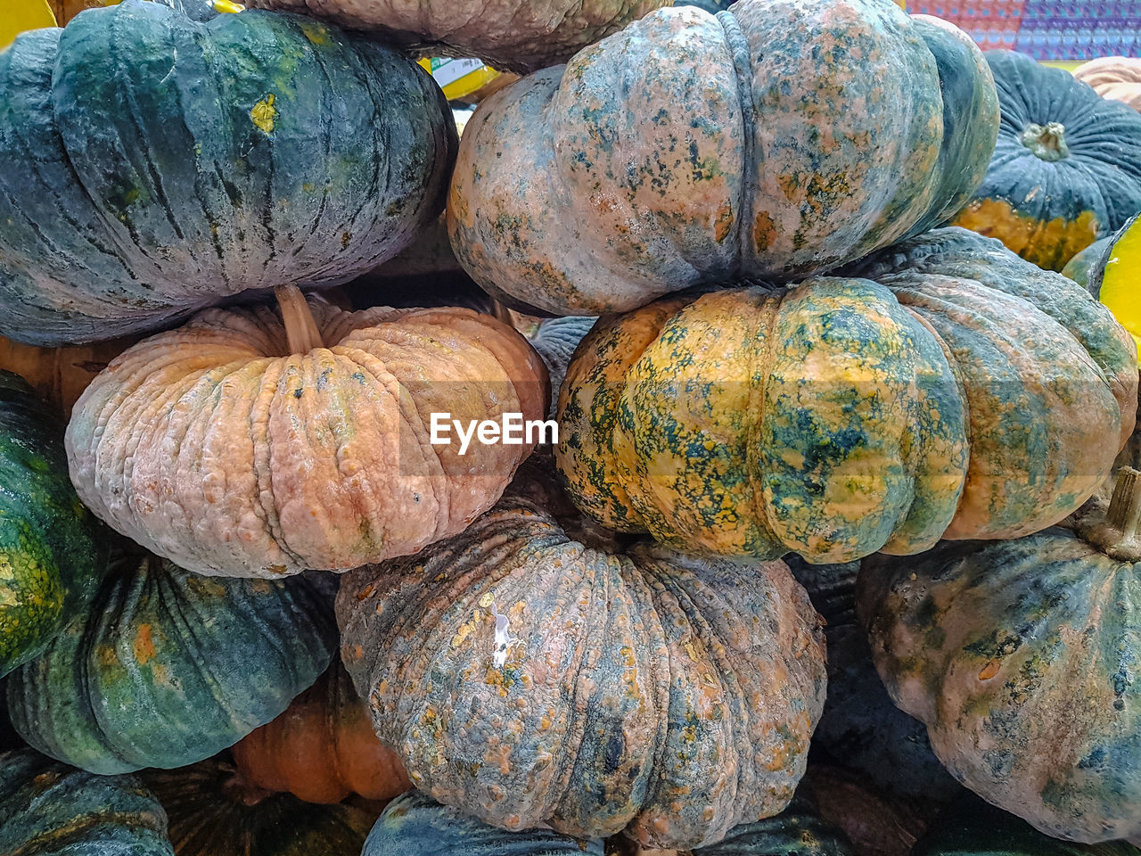 food and drink, healthy eating, food, large group of objects, freshness, wellbeing, full frame, backgrounds, pumpkin, still life, vegetable, no people, day, for sale, retail, market, market stall, stack, high angle view, close-up, outdoors