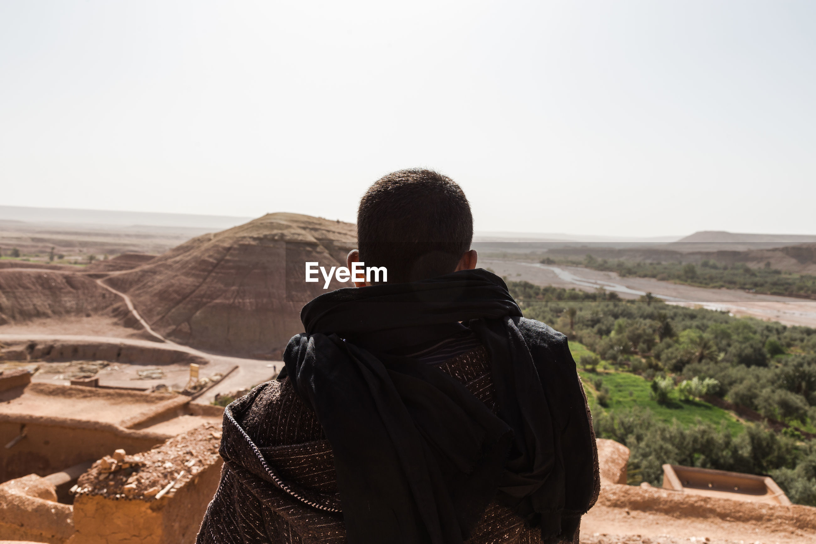 Rear view of man looking at landscape against clear sky