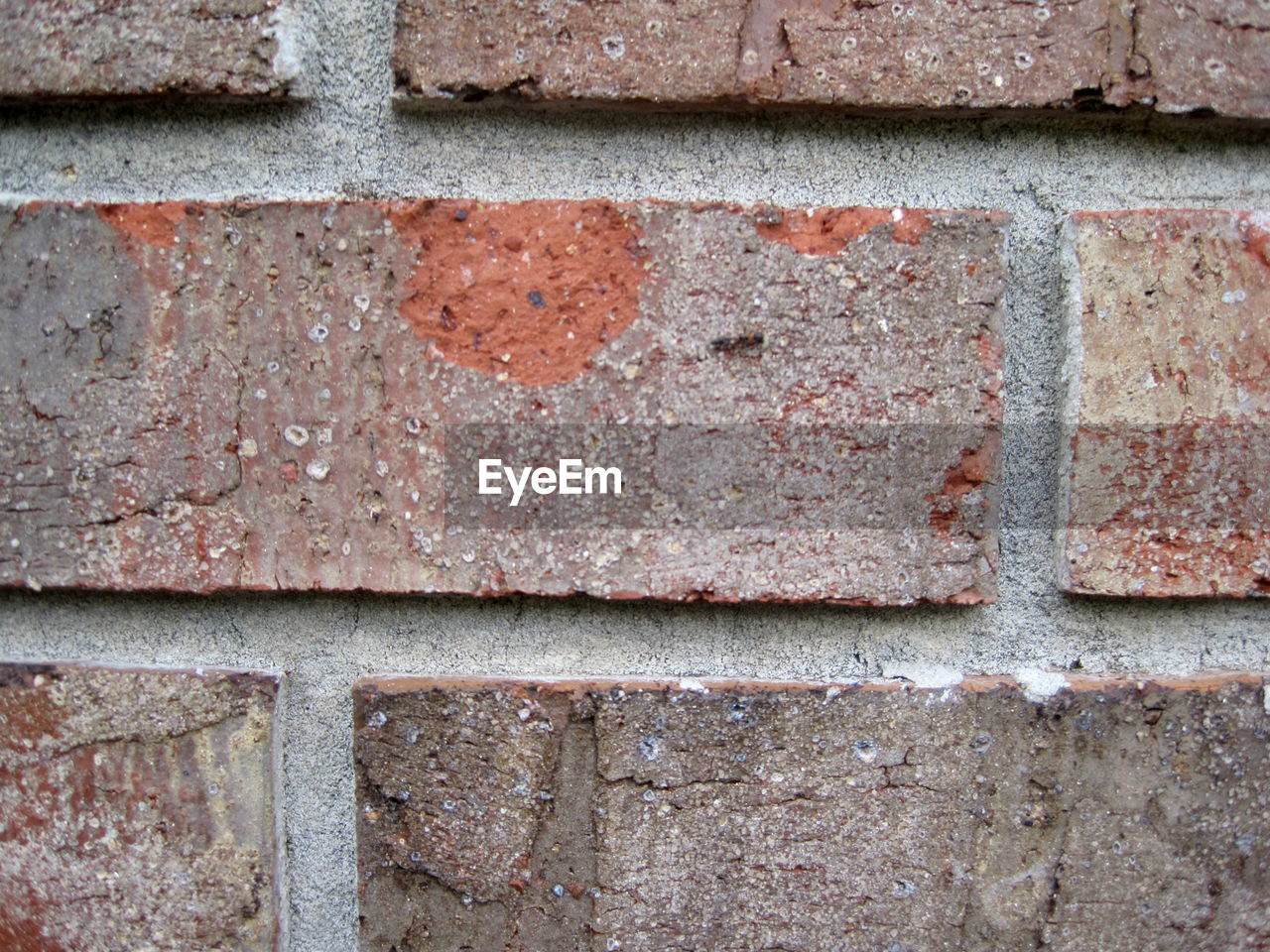 brick, brick wall, full frame, backgrounds, wall - building feature, wall, architecture, no people, built structure, textured, pattern, close-up, day, building exterior, rough, old, concrete, outdoors, red, emotion