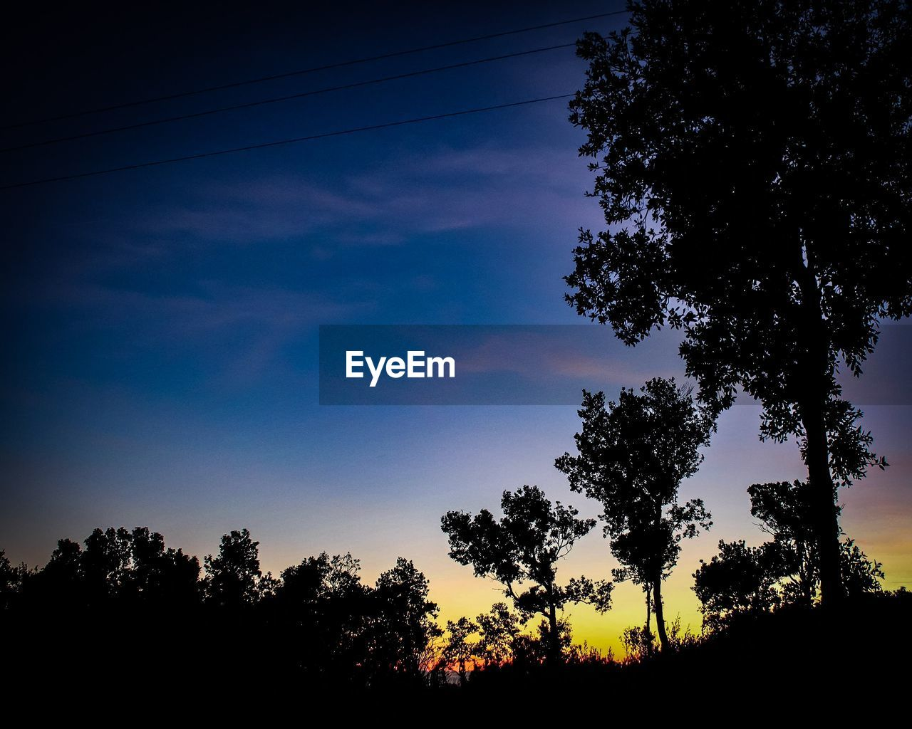 tree, plant, sky, silhouette, beauty in nature, tranquility, growth, tranquil scene, cloud - sky, scenics - nature, nature, low angle view, sunset, no people, non-urban scene, outdoors, idyllic, land, blue, dusk
