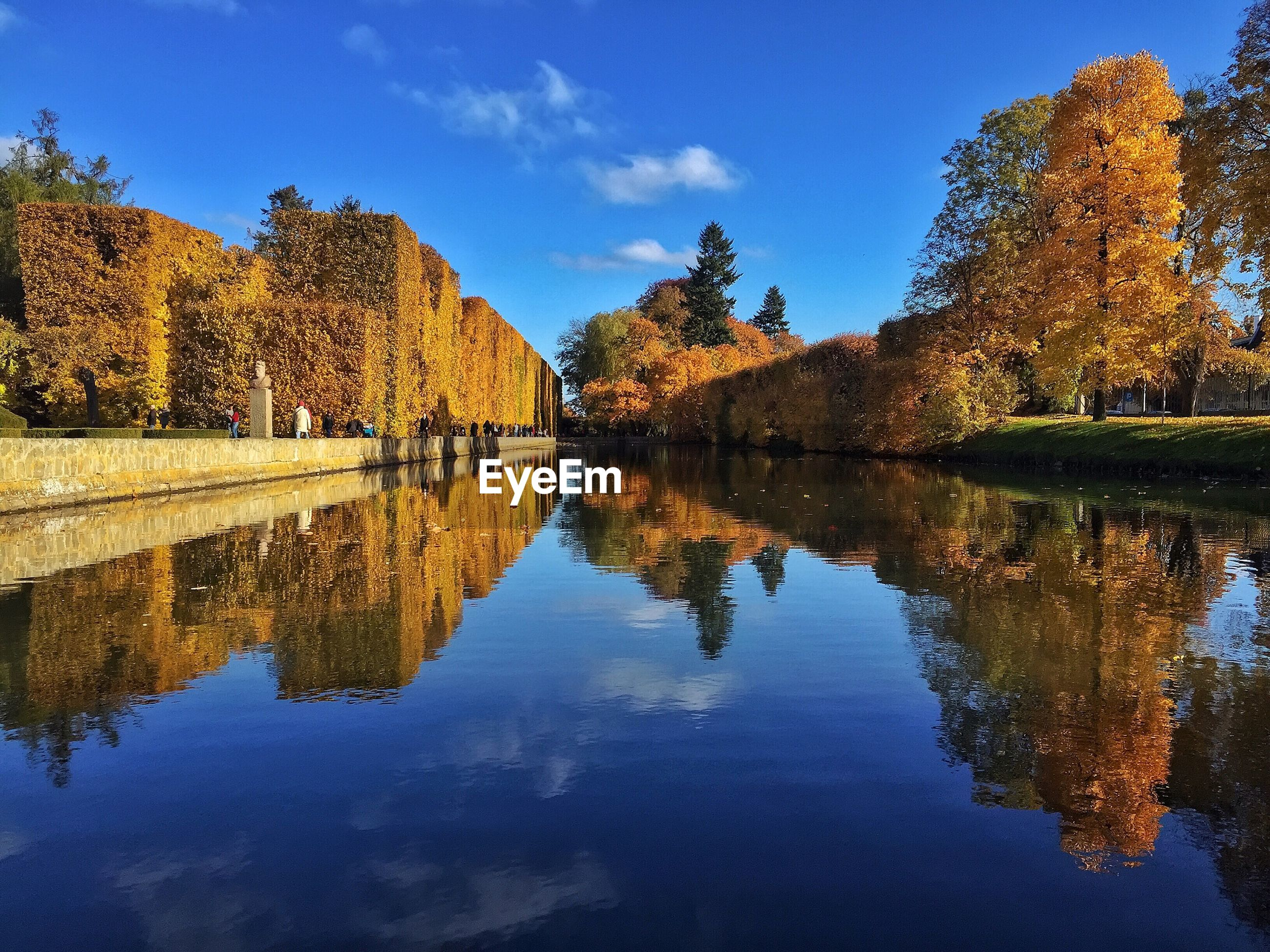 Reflection of trees on river during autumn