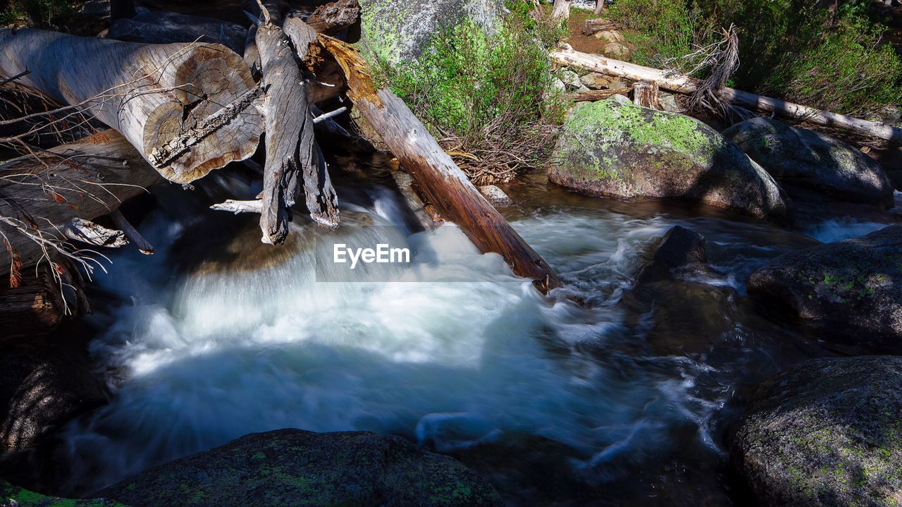 water, flowing water, rock, motion, forest, rock - object, long exposure, tree, scenics - nature, solid, nature, beauty in nature, flowing, land, blurred motion, plant, waterfall, no people, river, outdoors, stream - flowing water, power in nature