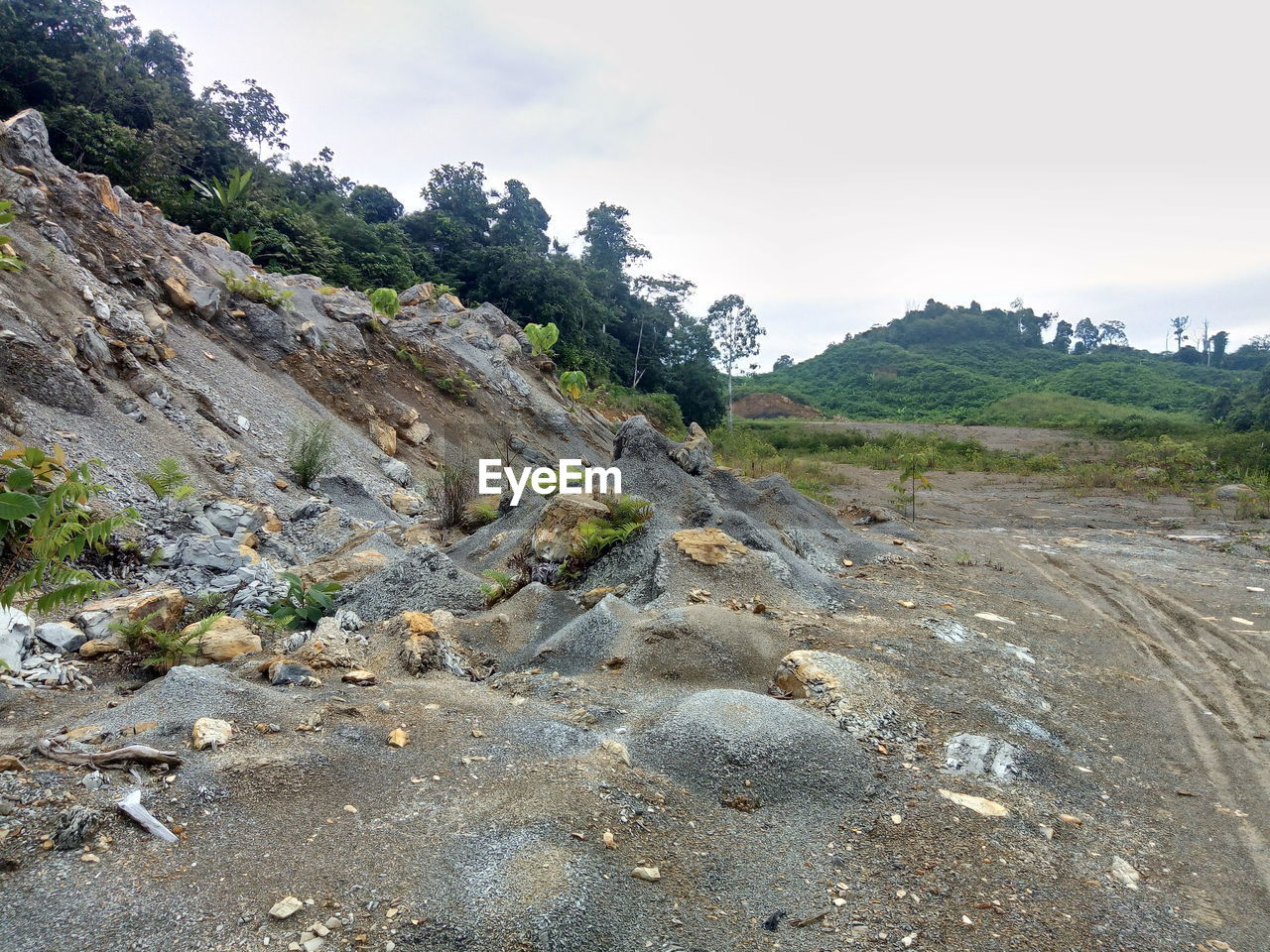 rock, sky, plant, beauty in nature, nature, tranquility, environment, day, tranquil scene, tree, rock - object, solid, scenics - nature, no people, non-urban scene, landscape, land, mountain, cloud - sky, outdoors, eroded