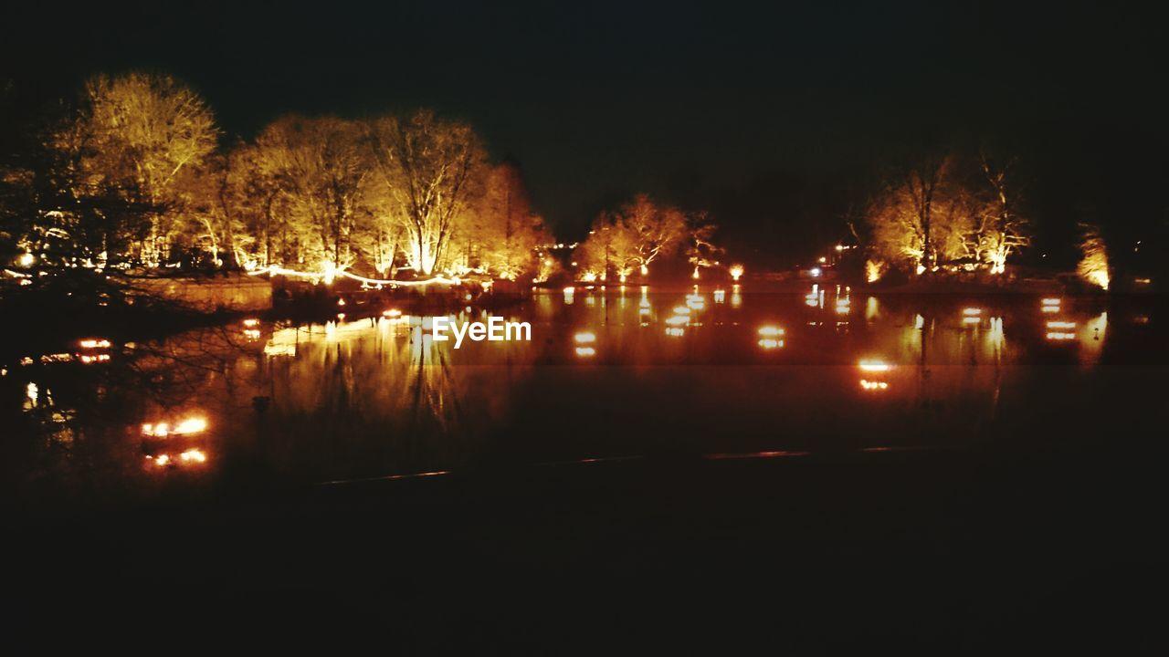 night, illuminated, tree, no people, bare tree, outdoors, nature, sky
