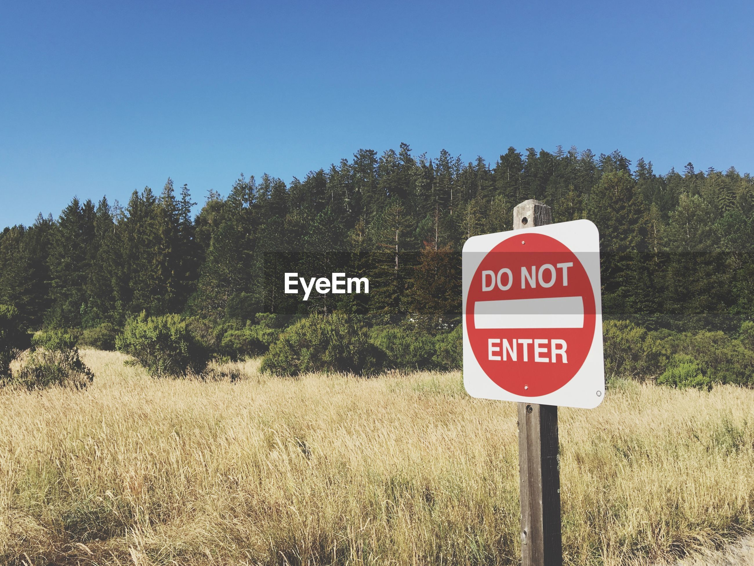 Do not enter sign on field against sky
