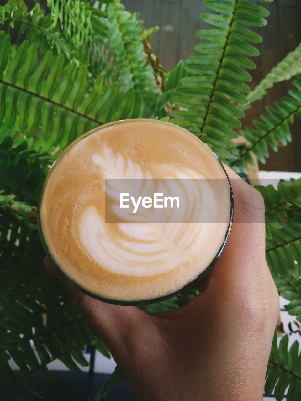 frothy drink, drink, cappuccino, food and drink, coffee - drink, coffee cup, leaf, froth art, human hand, refreshment, latte, one person, close-up, holding, human body part, green color, freshness, real people, indoors, day, healthy eating, thick, people
