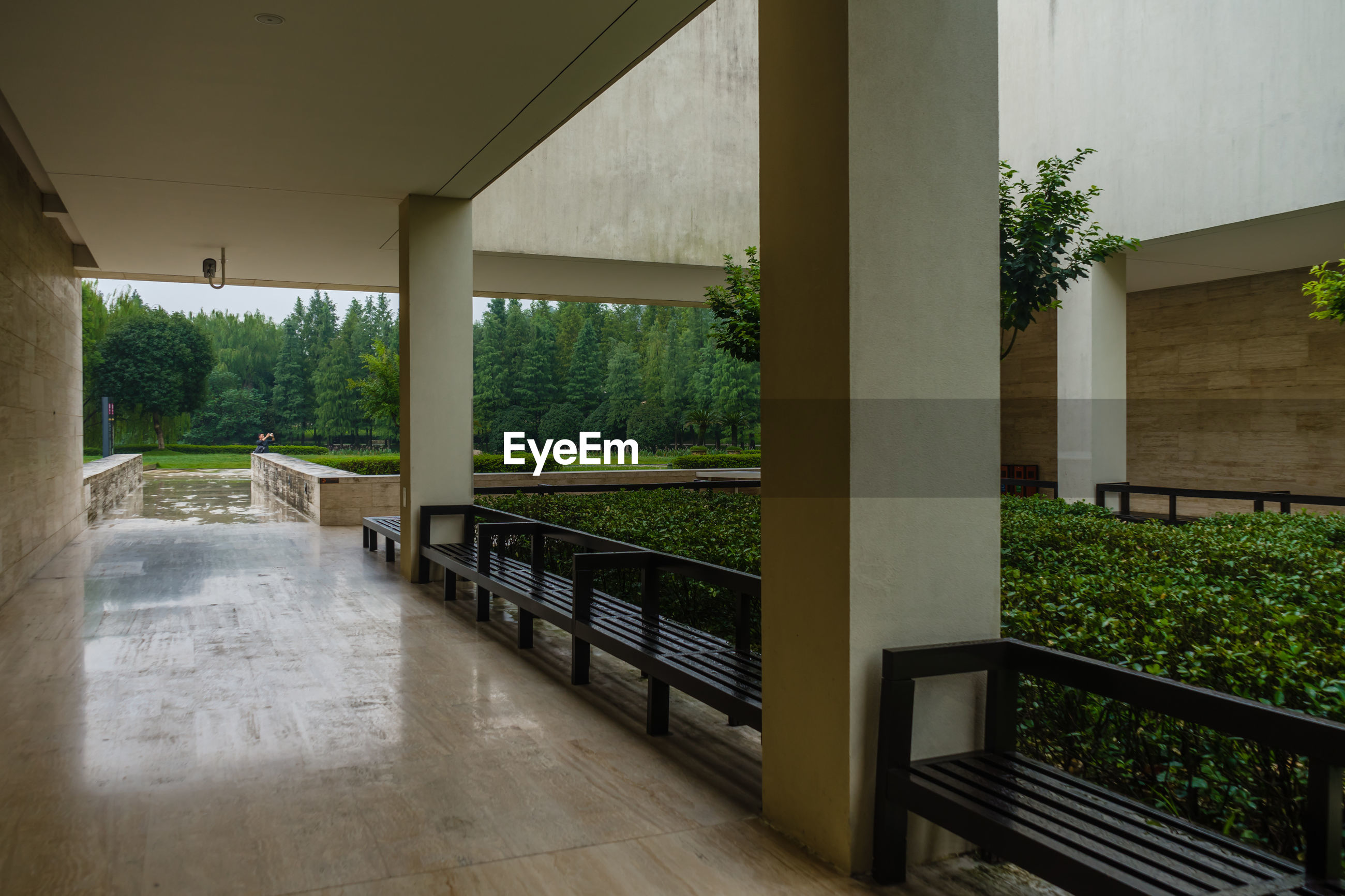 TREES AND PLANTS SEEN THROUGH BUILDING