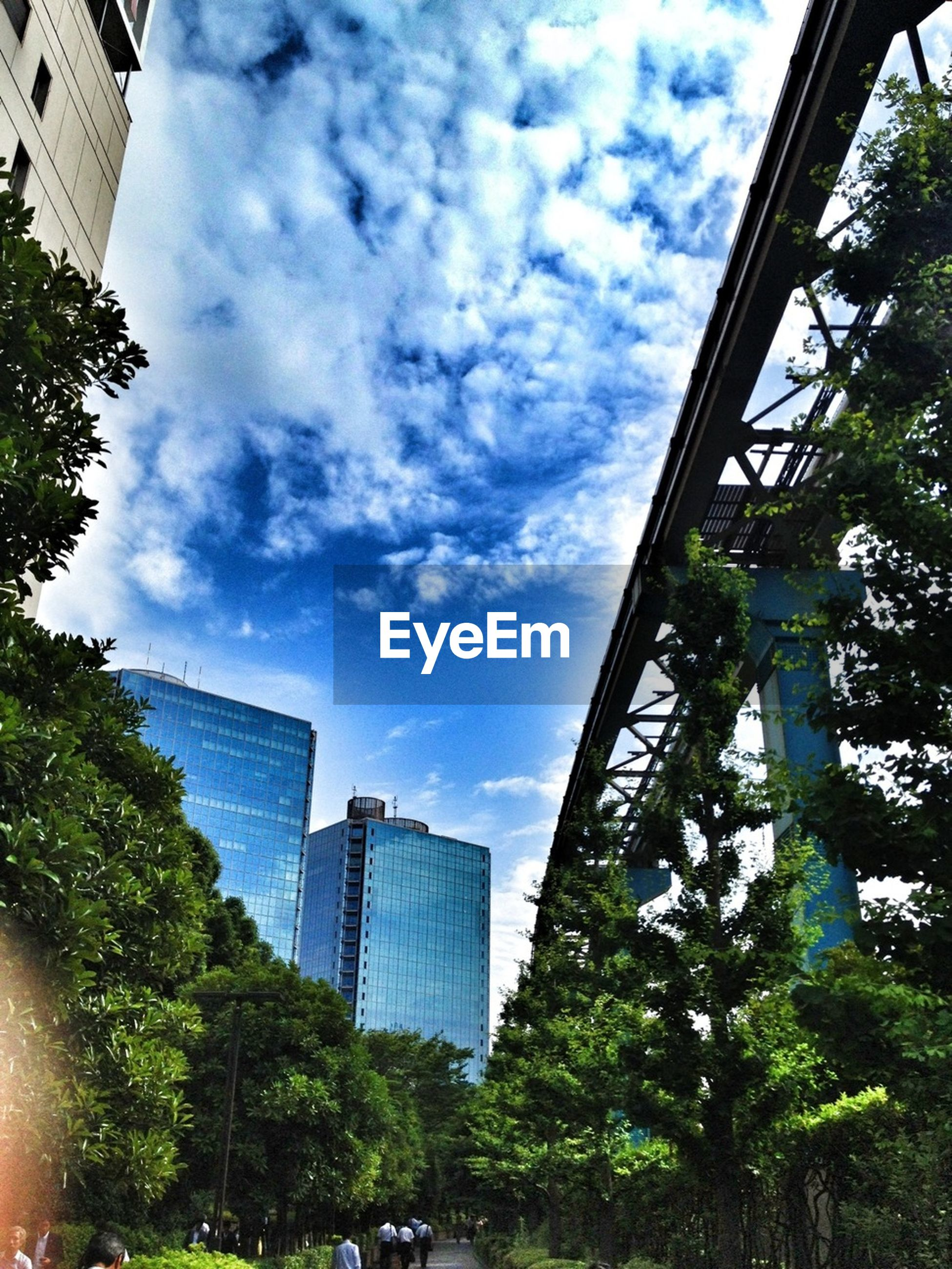 architecture, building exterior, built structure, modern, city, skyscraper, office building, low angle view, tree, sky, tall - high, building, tower, glass - material, cloud - sky, growth, city life, reflection, cloud, day