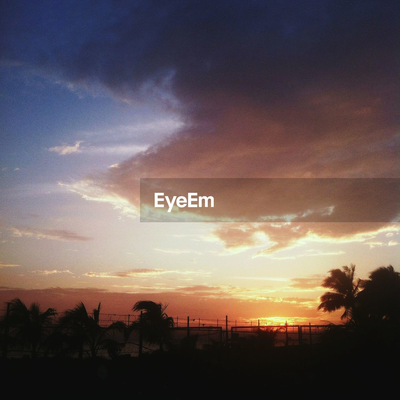 sunset, silhouette, sky, orange color, nature, beauty in nature, palm tree, sun, tranquil scene, scenics, tranquility, tree, landscape, cloud - sky, no people, outdoors