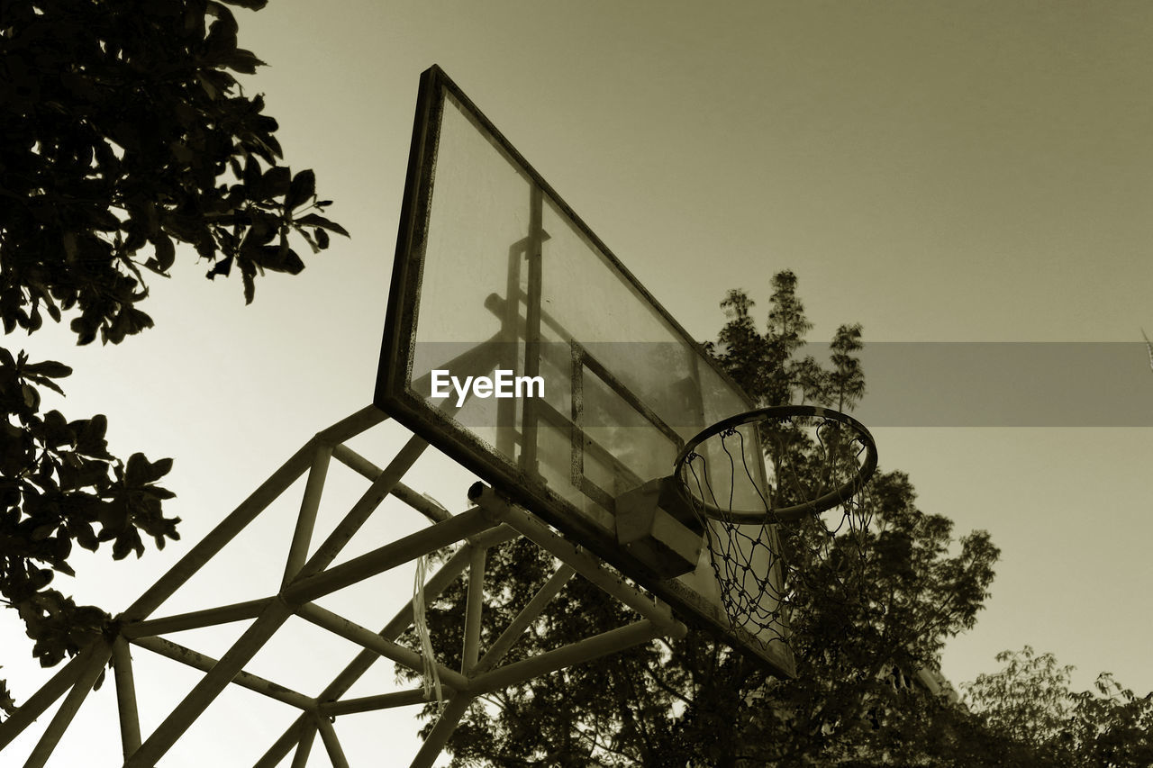 tree, sky, low angle view, plant, nature, architecture, built structure, no people, basketball hoop, basketball - sport, day, sport, outdoors, clear sky, building exterior, shape, geometric shape, ball, growth, copy space
