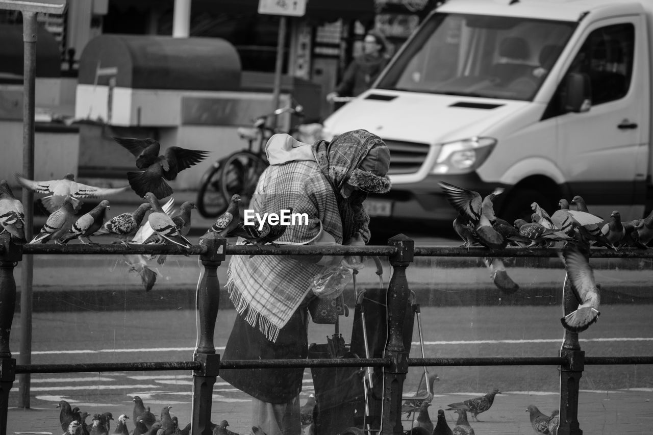 Old Woman Feeding Pigeons