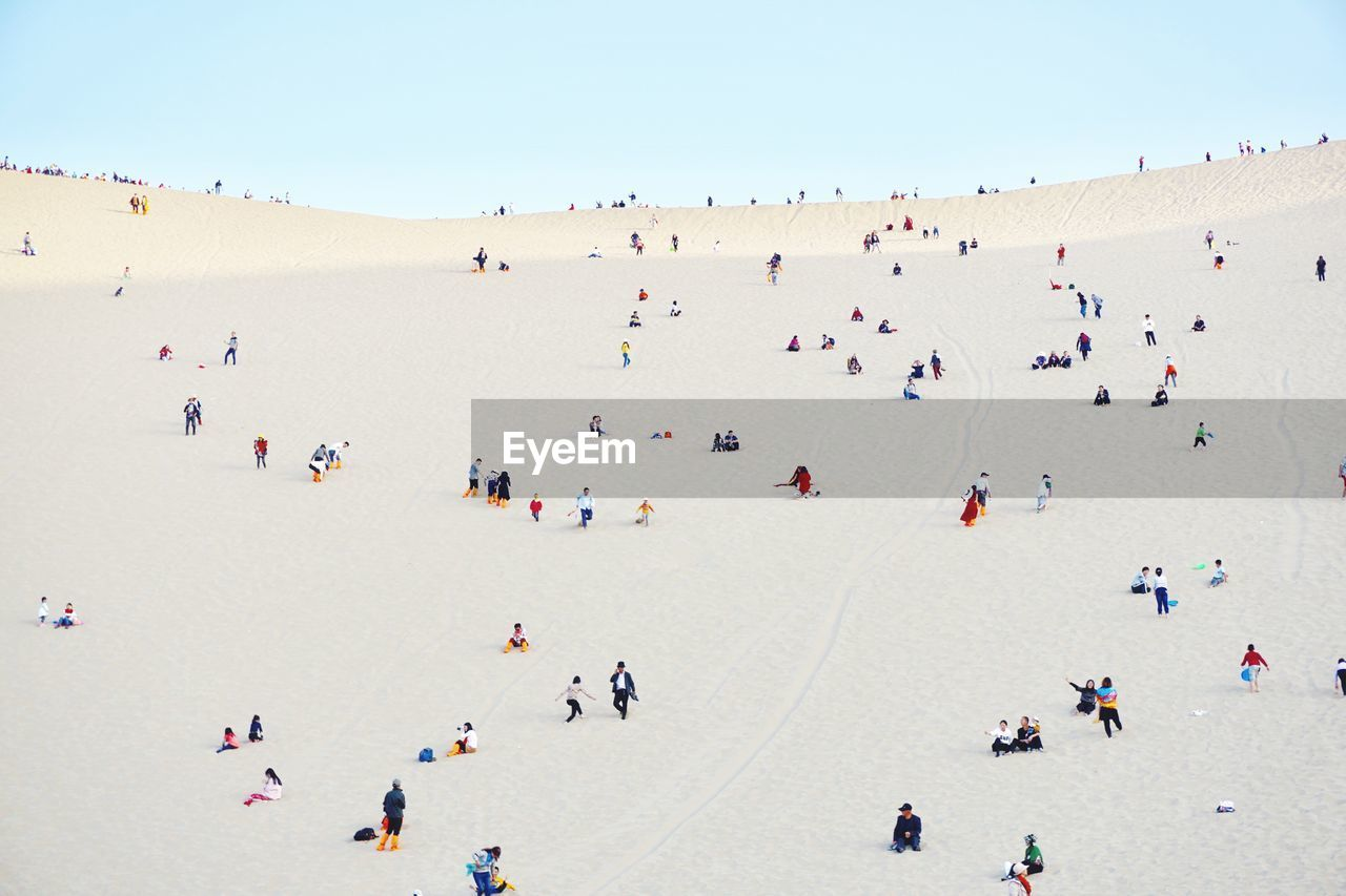 People At Beach Against Clear Sky