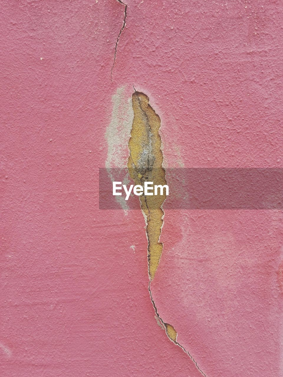 wall - building feature, close-up, pink color, no people, textured, built structure, architecture, day, damaged, full frame, leaf, cracked, plant part, weathered, old, wall, outdoors, backgrounds, nature, rough, deterioration