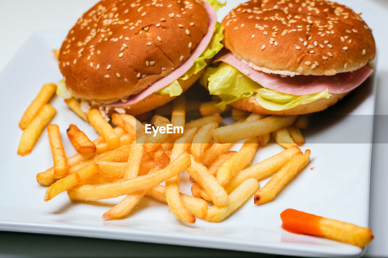 fast food, unhealthy eating, burger, sandwich, ready-to-eat, french fries, food and drink, food, prepared potato, hamburger, potato, close-up, bread, fried, bun, freshness, vegetable, still life, indoors, plate, no people, take out food, snack, temptation, tray, cheeseburger